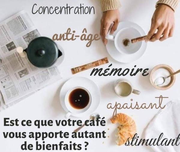 Le café Logiq